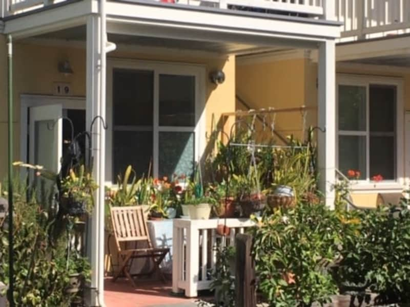 Housesitting assignment in Sonoma, California, United States