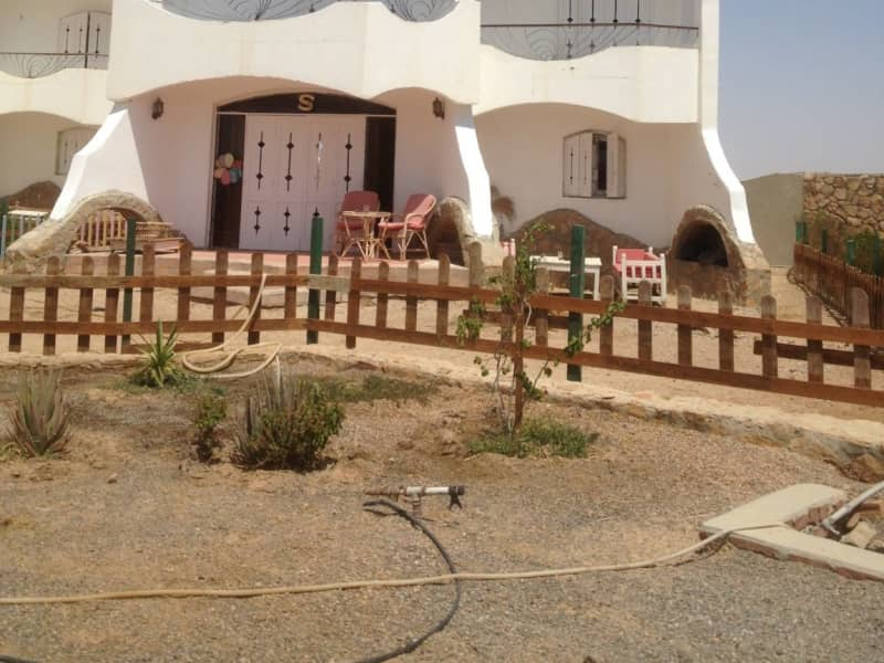 Housesitting assignment in Būr Safājah, Egypt