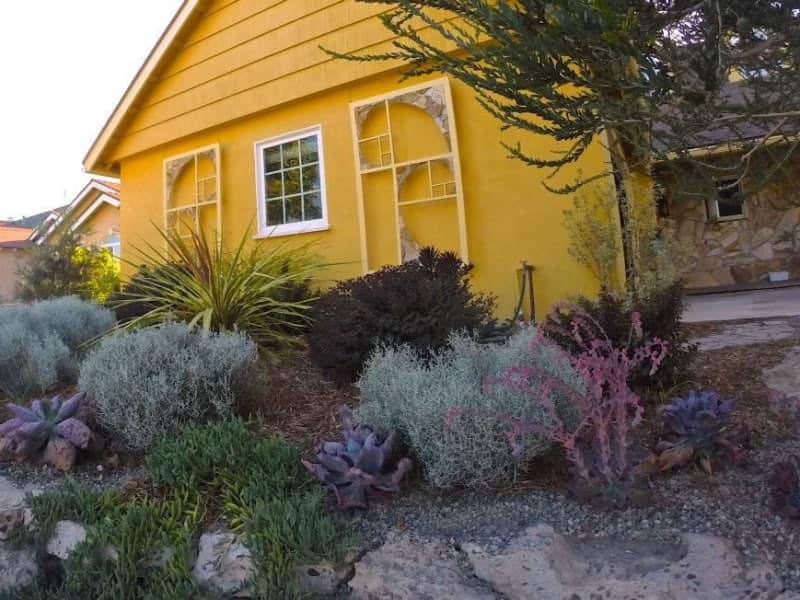 Housesitting assignment in Garden Grove, California, United States