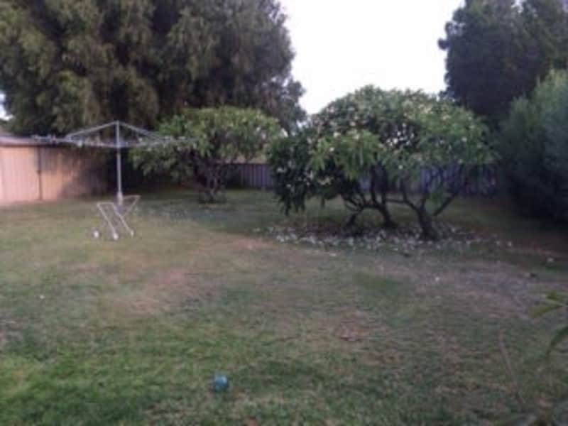 Housesitting assignment in Singleton, Western Australia, Australia