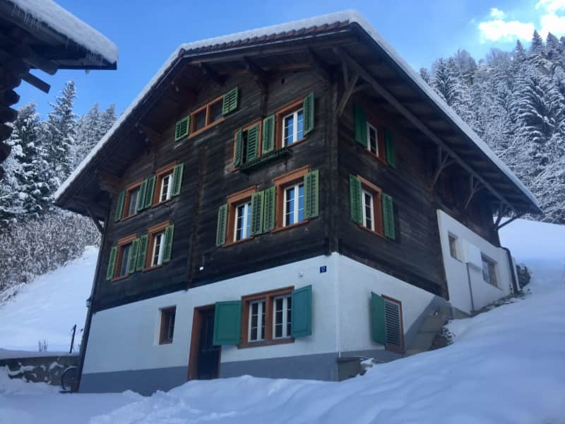 Housesitting assignment in Tavanasa, Switzerland