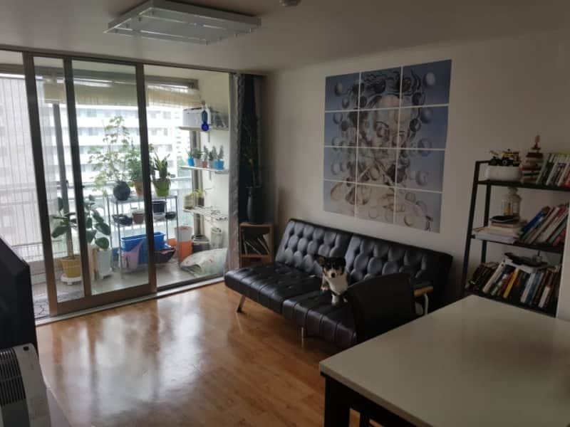 Housesitting assignment in Daejeon, South Korea