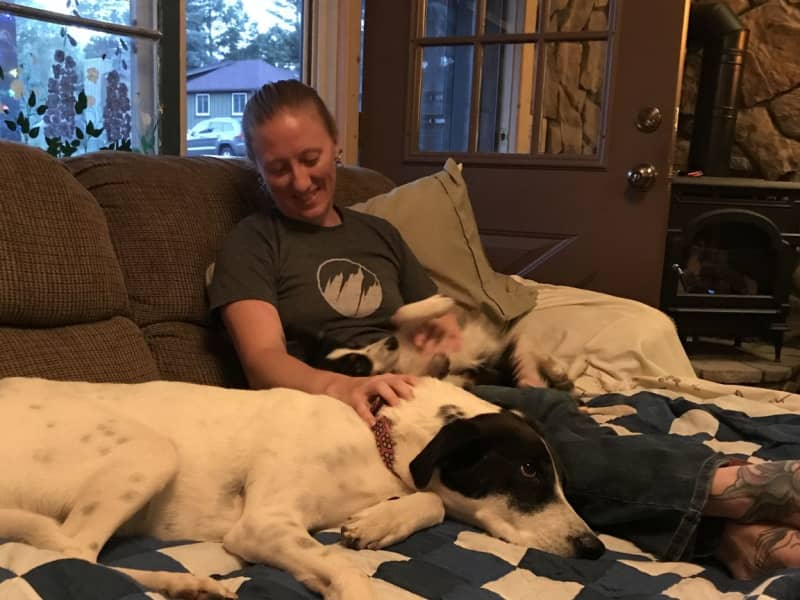 Housesitting assignment in Loveland, Colorado, United States