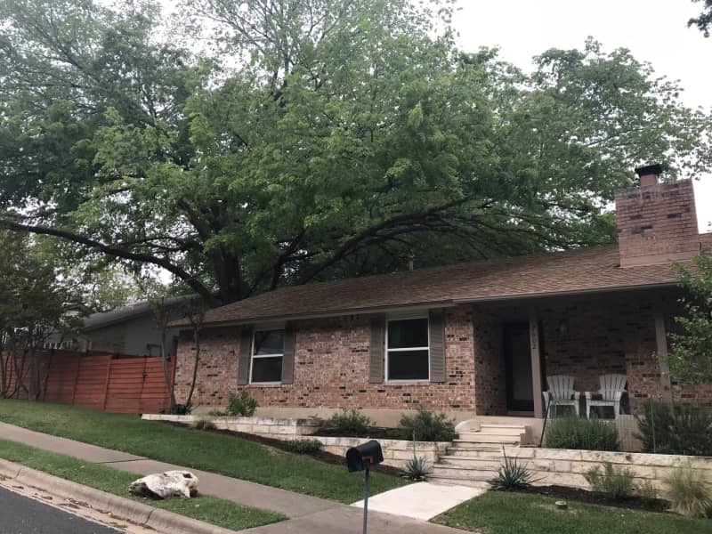 Housesitting assignment in Austin, Texas, United States