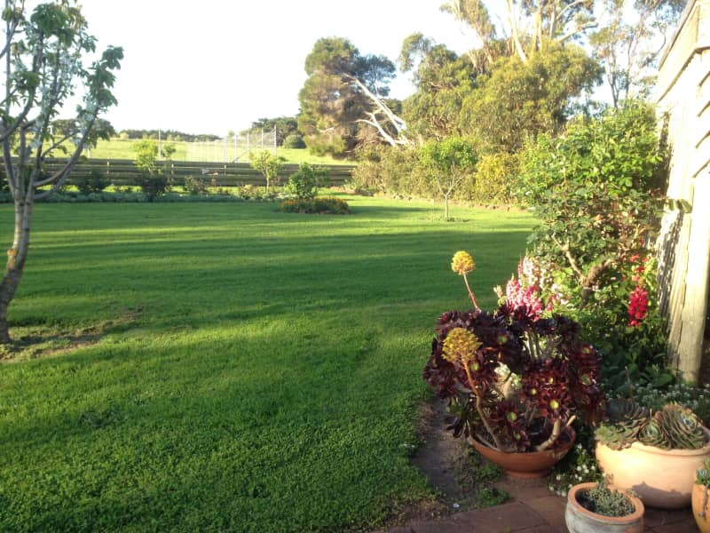 Housesitting assignment in Rosebrook, Victoria, Australia