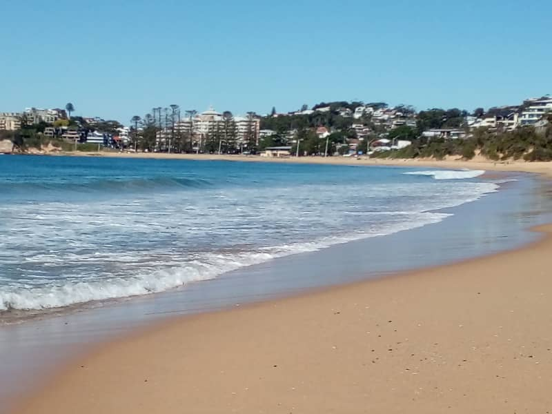 Housesitting assignment in Gosford, New South Wales, Australia