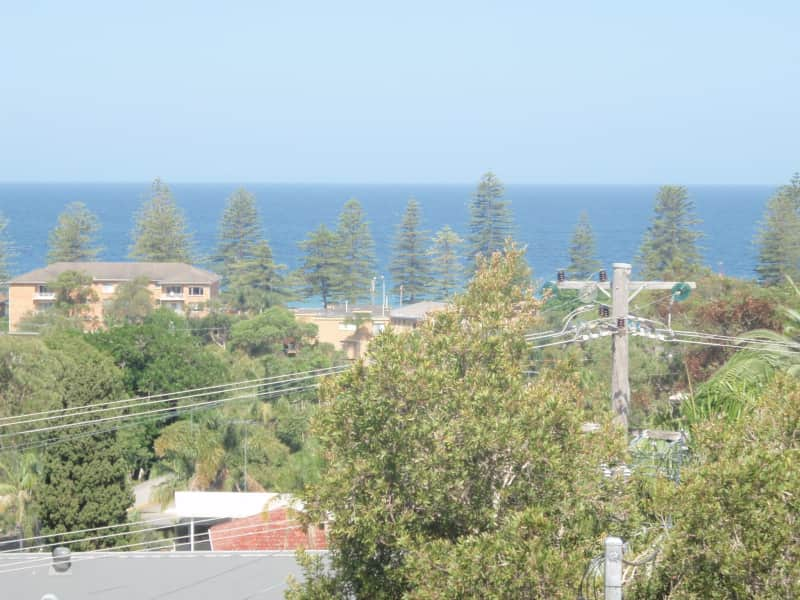 Housesitting assignment in Newport, New South Wales, Australia