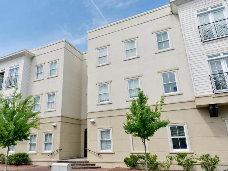 Housesitting assignment in Savannah, Georgia, United States