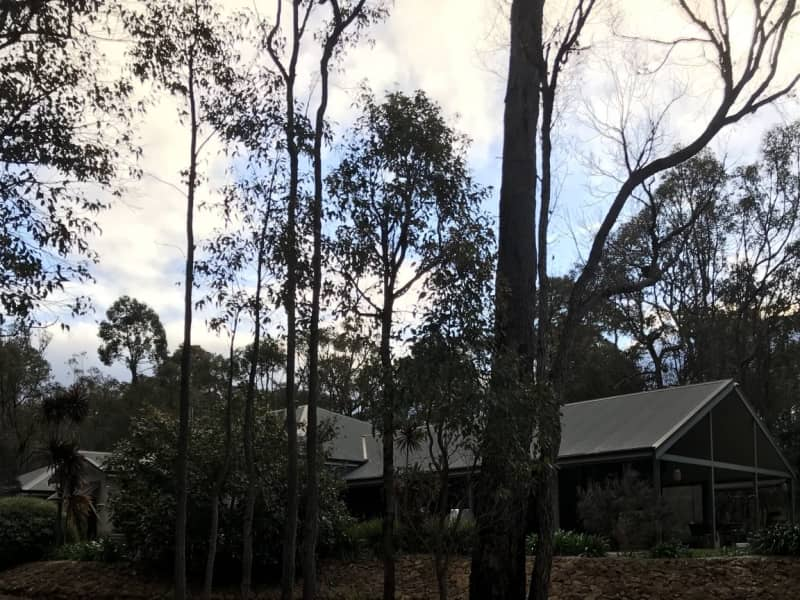 Housesitting assignment in Yallingup Siding, Western Australia, Australia