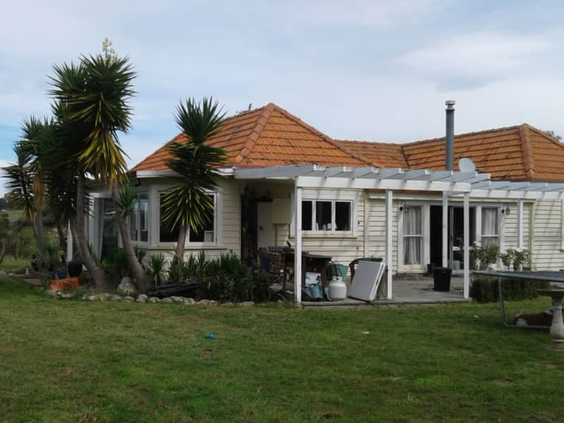 Housesitting assignment in Napier, New Zealand