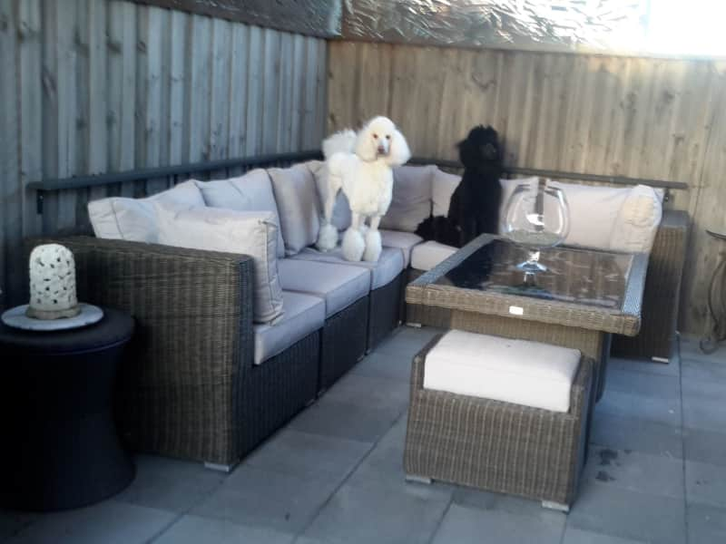 Housesitting assignment in Mernda, Victoria, Australia