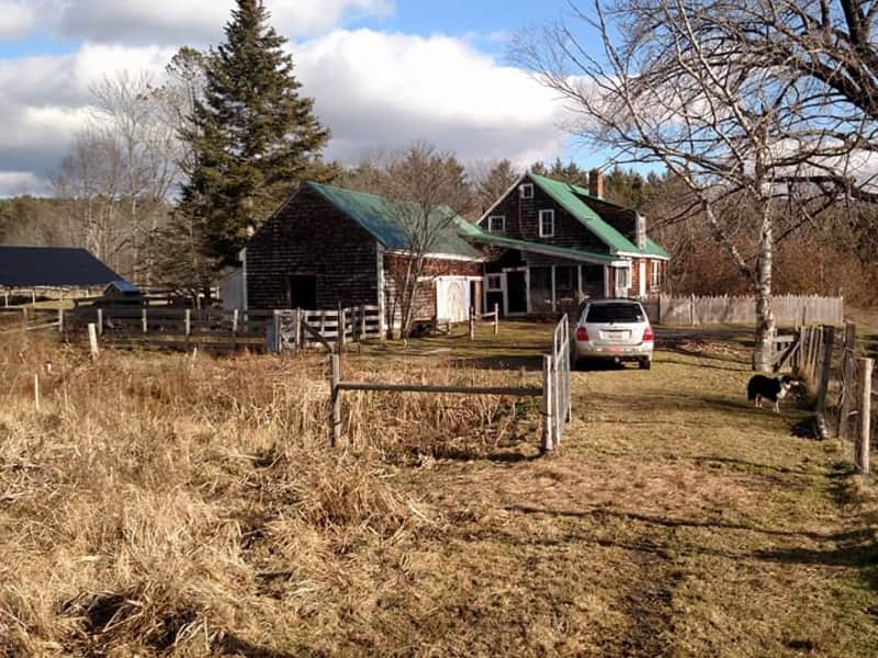 Housesitting assignment in Brookfield, Vermont, United States