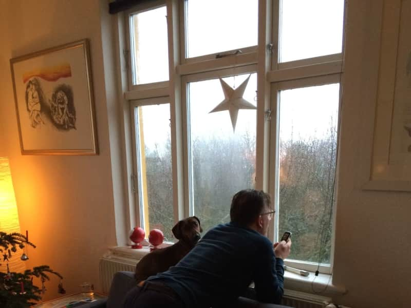 Housesitting assignment in Brabrand, Denmark