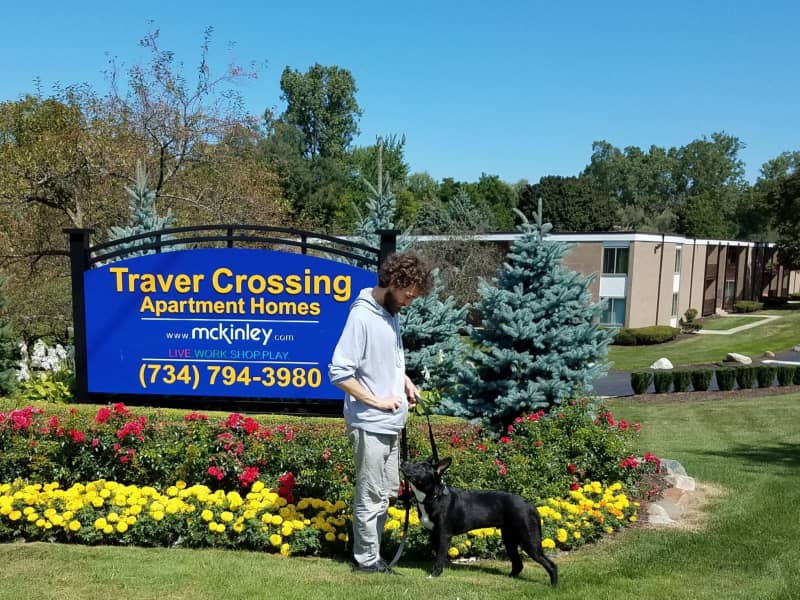 Housesitting assignment in Ann Arbor, Michigan, United States