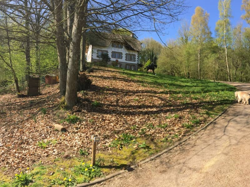 Housesitting assignment in Putanges-Pont-Écrepin, France
