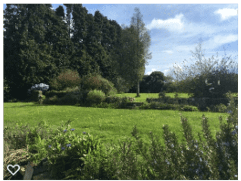 Housesitting assignment in Chard, United Kingdom