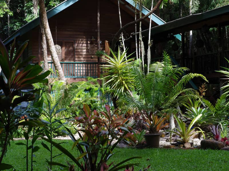 Housesitting assignment in Kuranda, Queensland, Australia