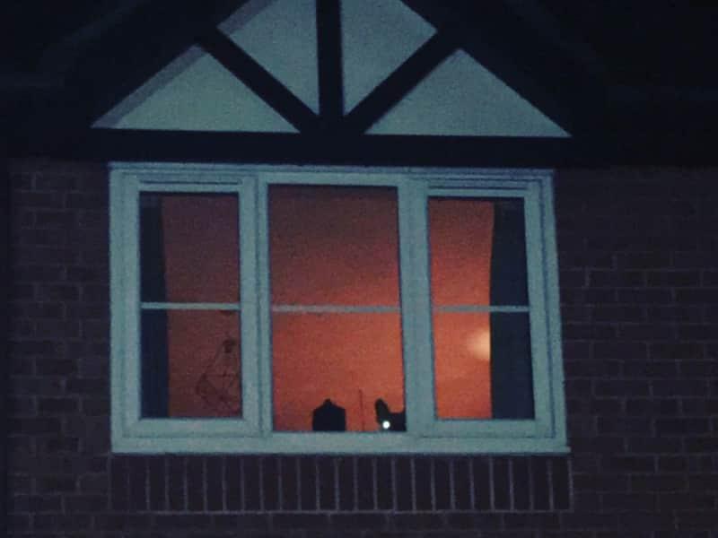 Housesitting assignment in Rickmansworth, United Kingdom