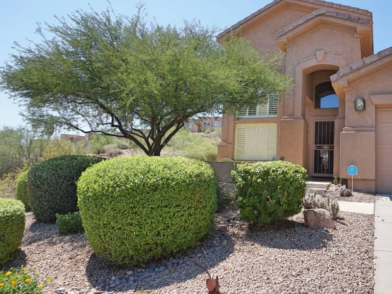 Housesitting assignment in Scottsdale, Arizona, United States