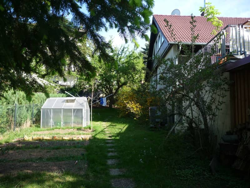 Housesitting assignment in Lindenfels, Germany