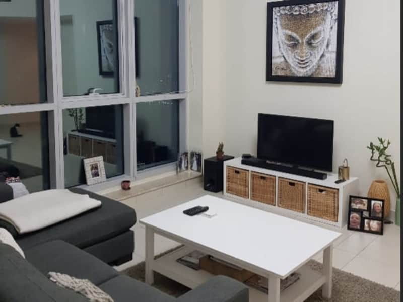 Housesitting assignment in Dubai Marina, United Arab Emirates