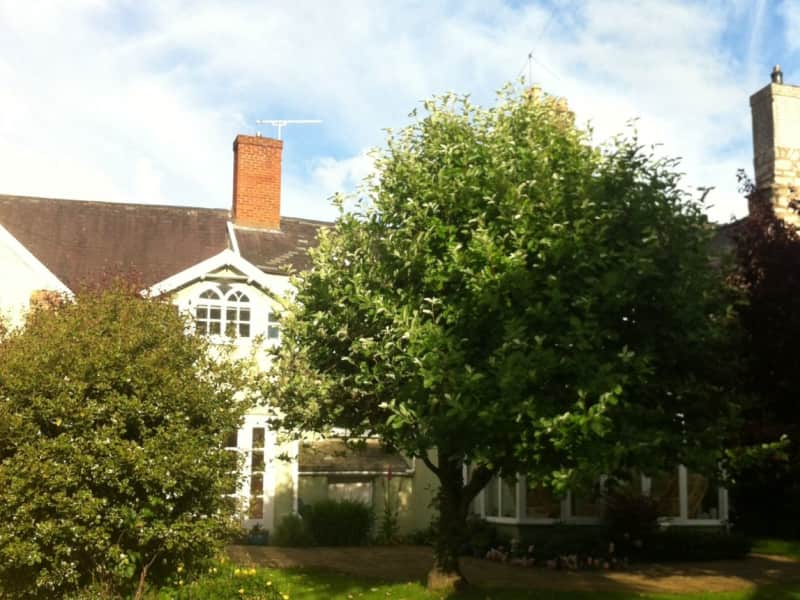 Housesitting assignment in Ruthin, United Kingdom