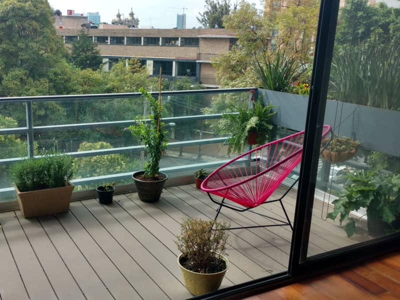 Housesitting assignment in Mexico City, Mexico