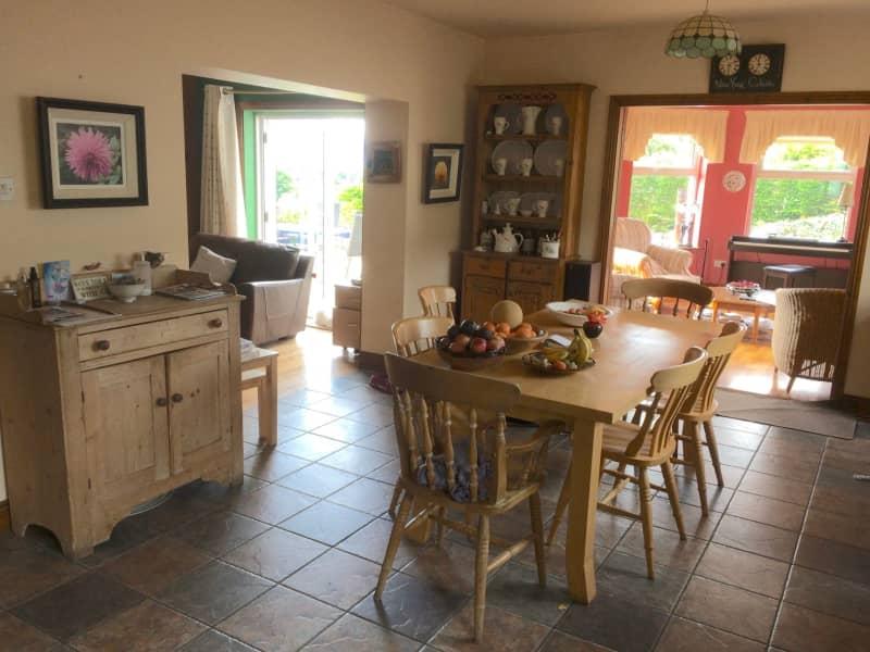 Housesitting assignment in Cahir, Ireland