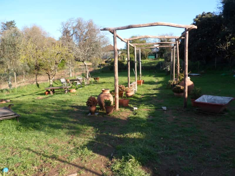 Housesitting assignment in Leiria, Portugal