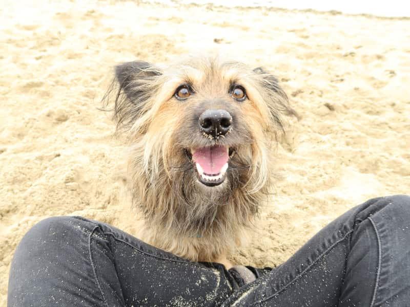 Carlota from Palma, Spain