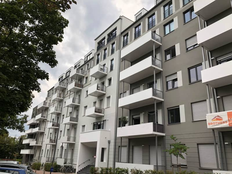 Housesitting assignment in Frankfurt am Main, Germany