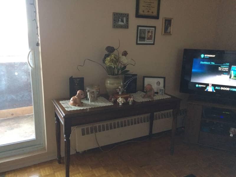 Housesitting assignment in Orangeville, Ontario, Canada