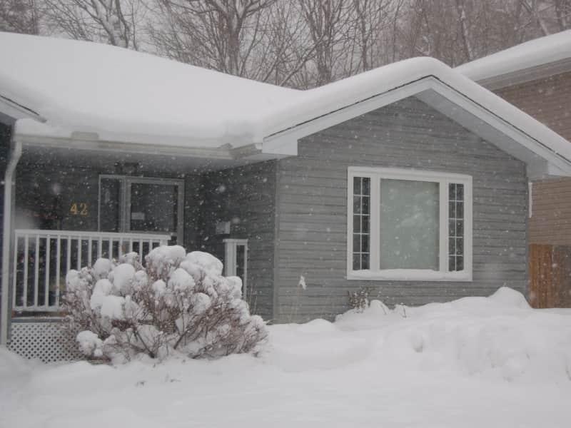 Housesitting assignment in Huntsville, Ontario, Canada