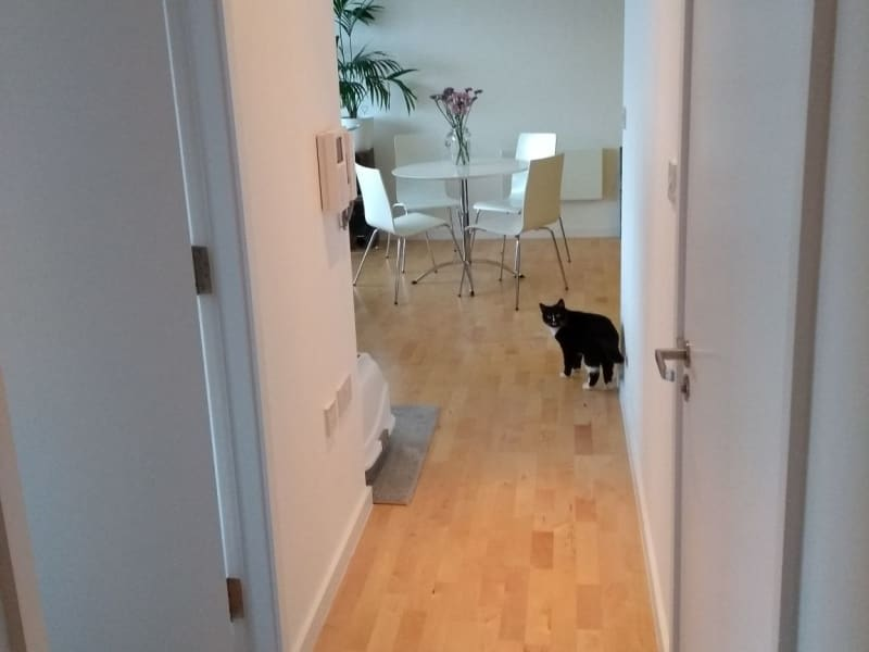 Housesitting assignment in Leeds, United Kingdom