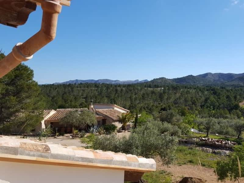 Housesitting assignment in Rasquera, Spain