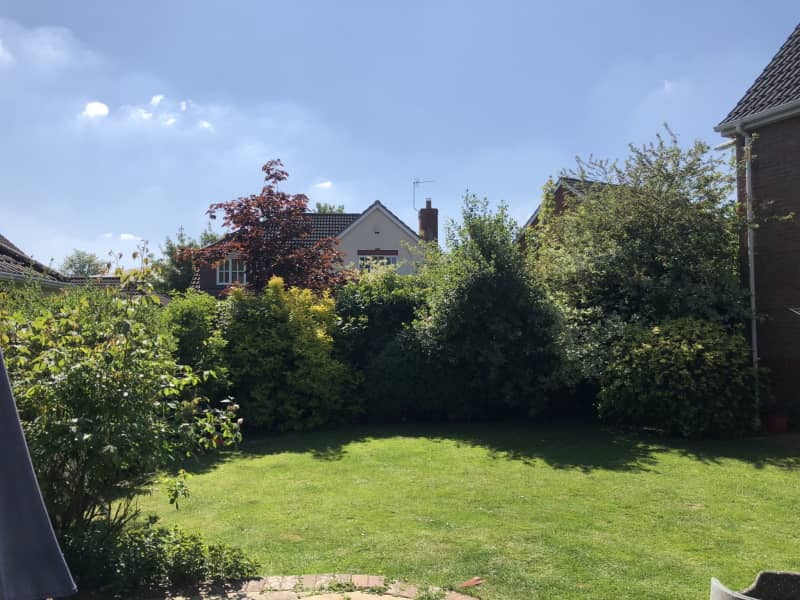 Housesitting assignment in Basingstoke, United Kingdom