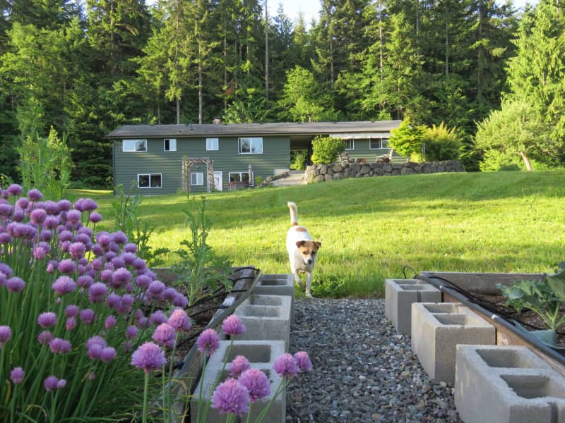Housesitting assignment in Port Angeles, Washington, United States