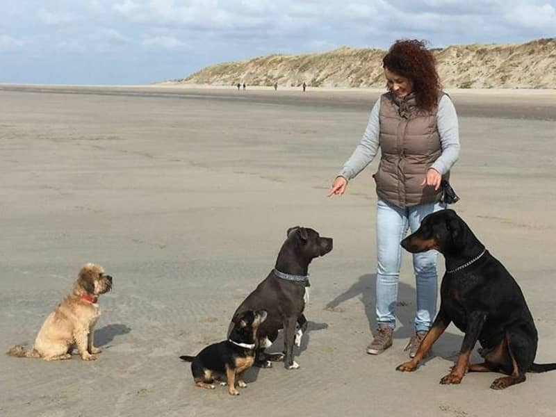 Cynthia from Burgh-Haamstede, Netherlands