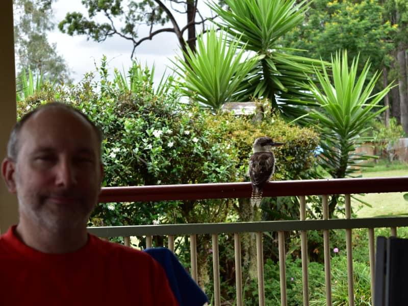 Housesitting assignment in Samford, Queensland, Australia