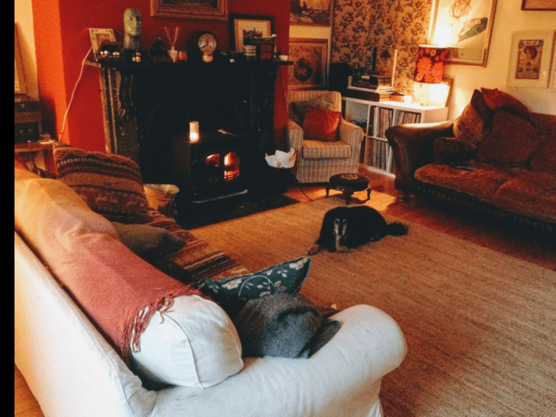 Housesitting assignment in Enfield, Ireland