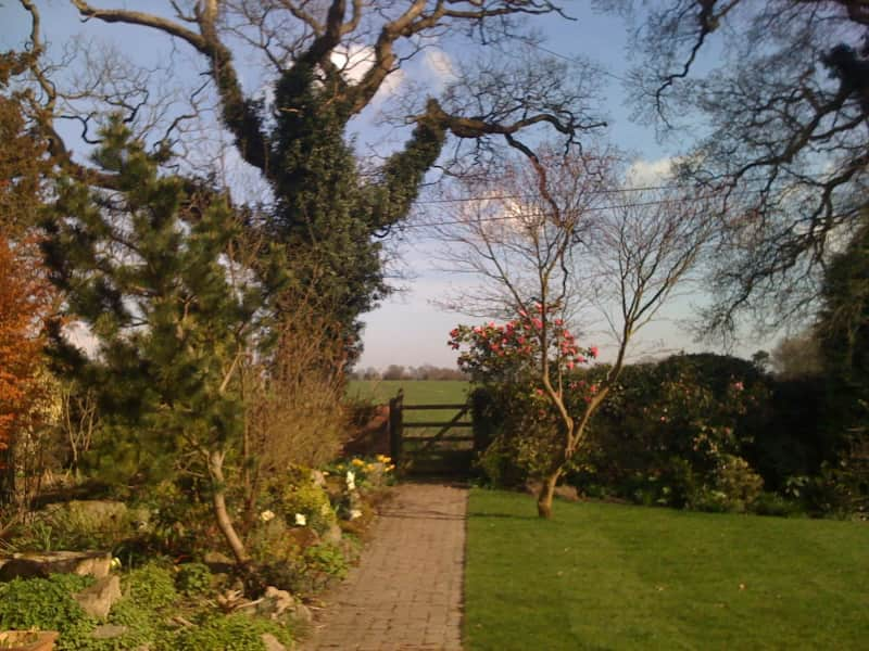 Housesitting assignment in Maidstone, United Kingdom