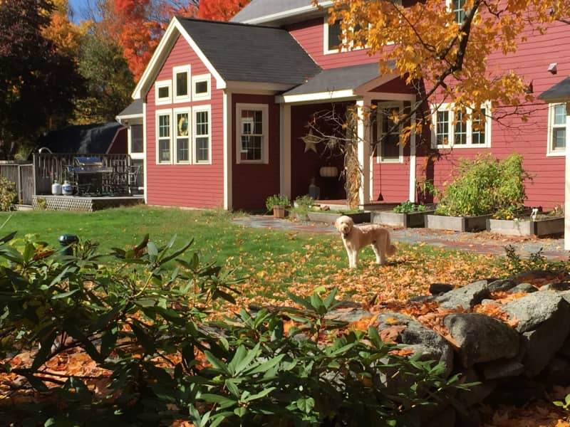 Housesitting assignment in Boylston, Massachusetts, United States