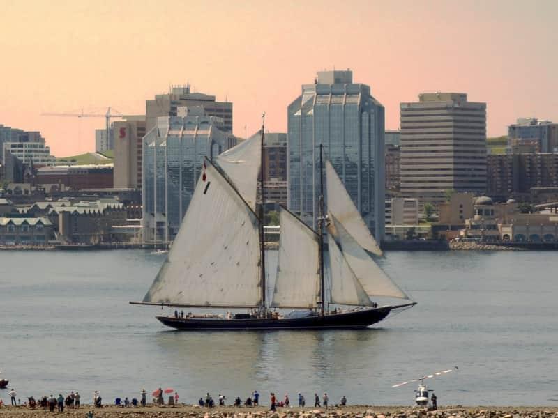 Housesitting assignment in Halifax, Nova Scotia, Canada