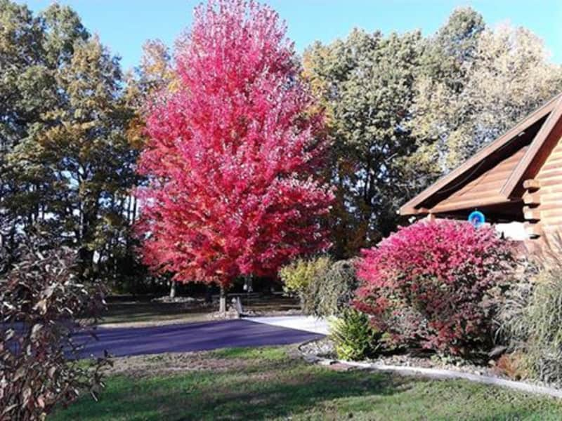 Housesitting assignment in Jackson, Michigan, United States
