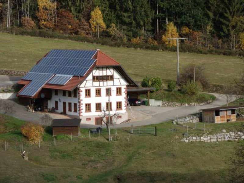 Housesitting assignment in Schuttertal, Germany