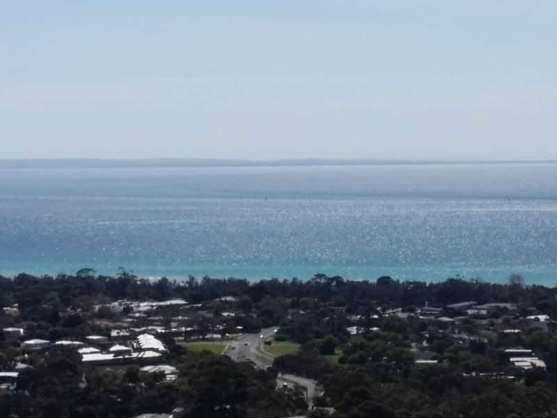 Housesitting assignment in McCrae, Victoria, Australia