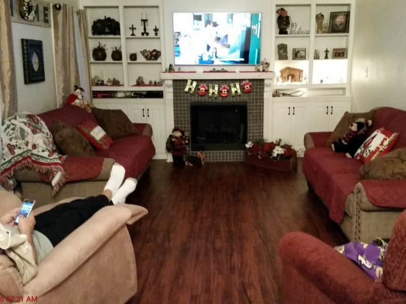 Housesitting assignment in Denham Springs, Louisiana, United States