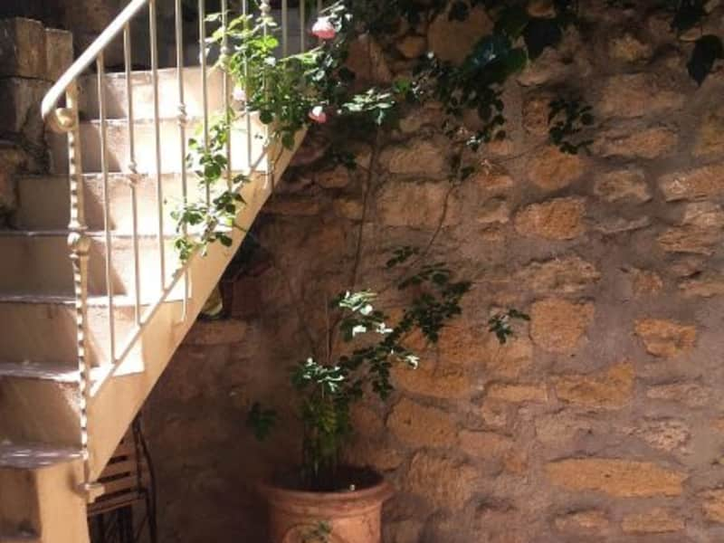 Housesitting assignment in Alleins, France
