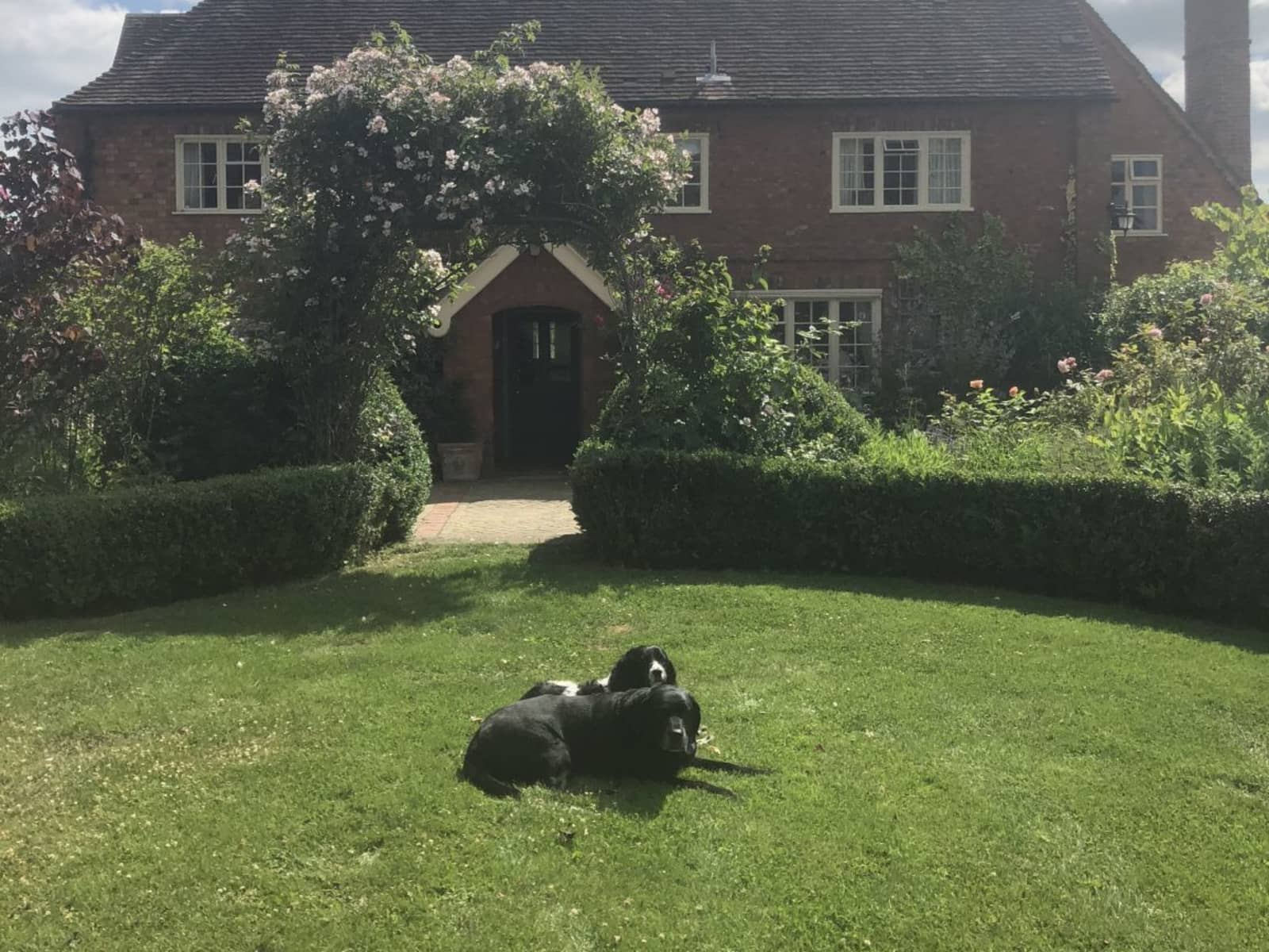 Housesitting assignment in Alcester, United Kingdom