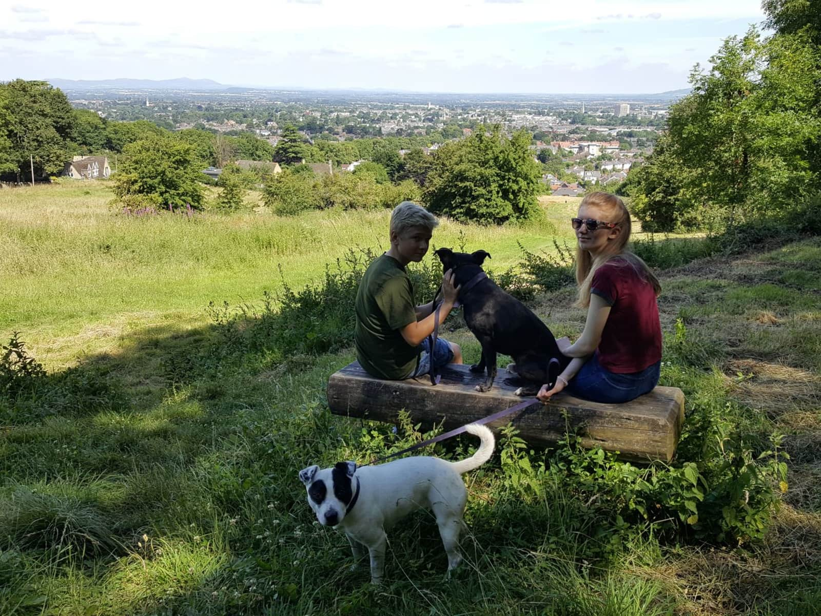 Housesitting assignment in Cheltenham, United Kingdom